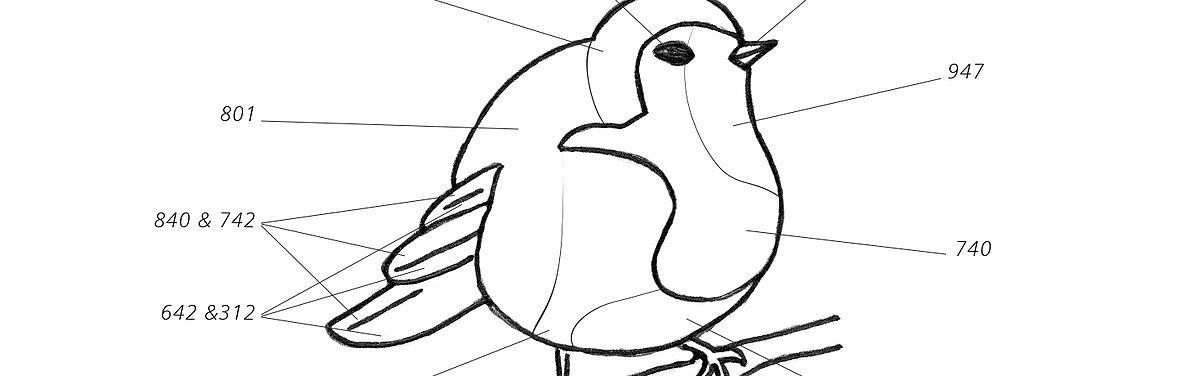 oiseau-extrait
