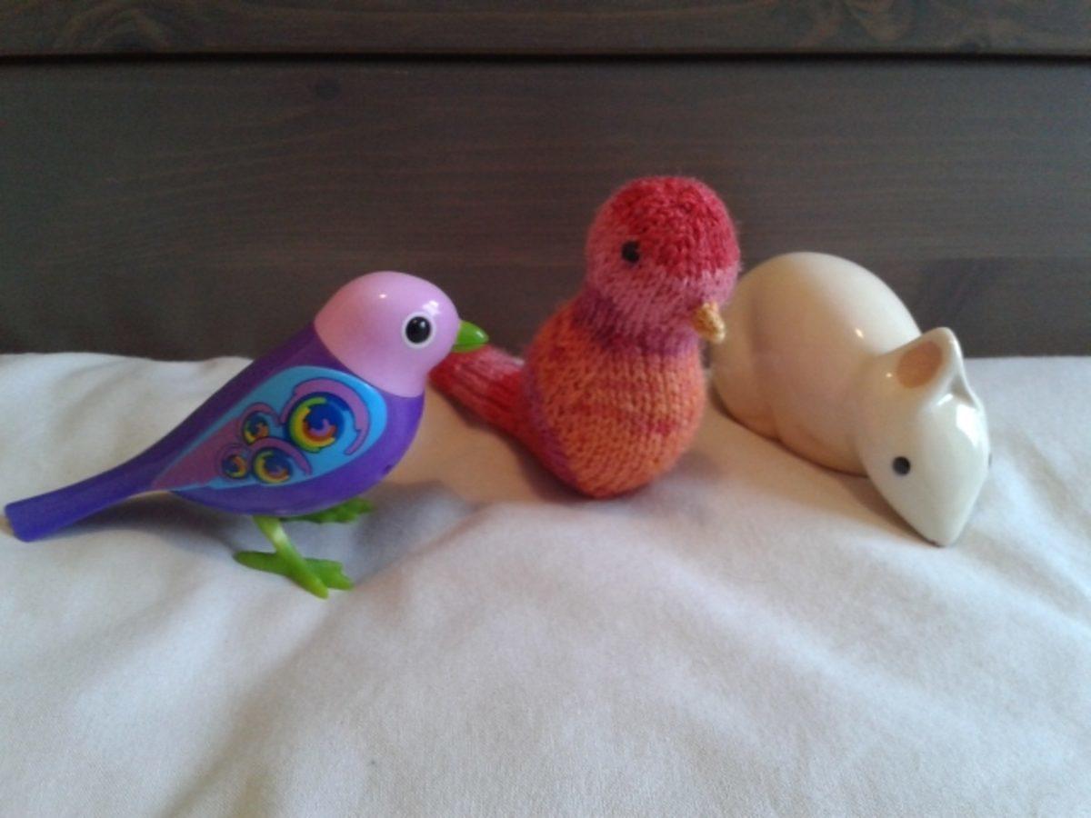 mldi294_oiseaux tricot4