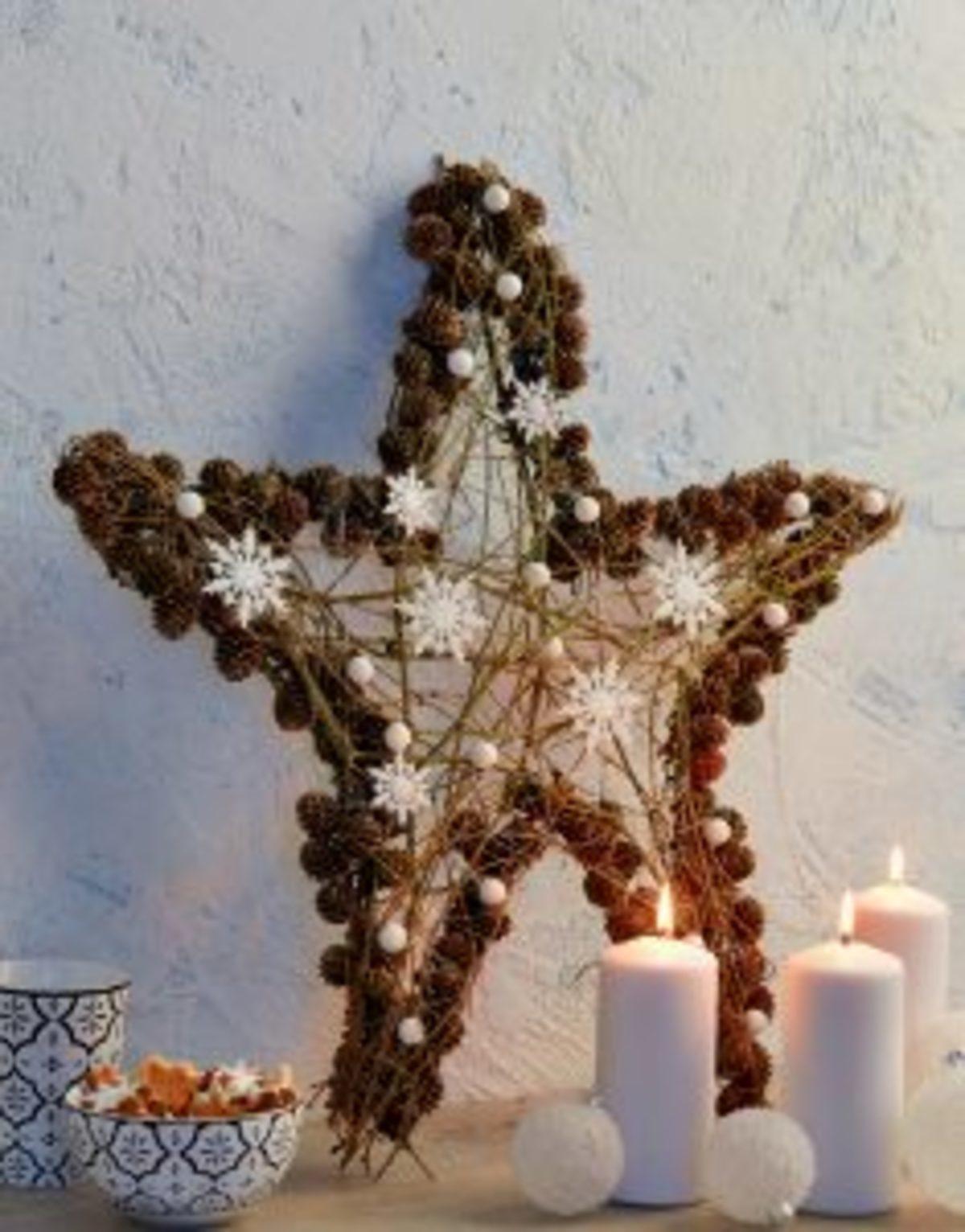 MAGIC039 étoile Noël éléments naturels