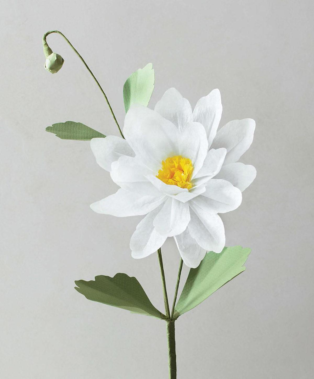 MLDI311 fleurs en papier DIY