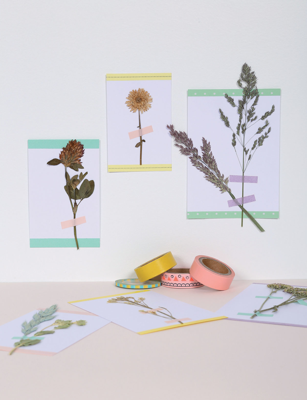 Herbiers Cartes Hélène Jourdain