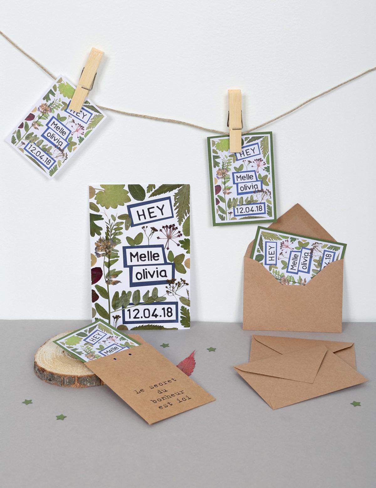 Herbiers animés cartes Hélène Jourdain