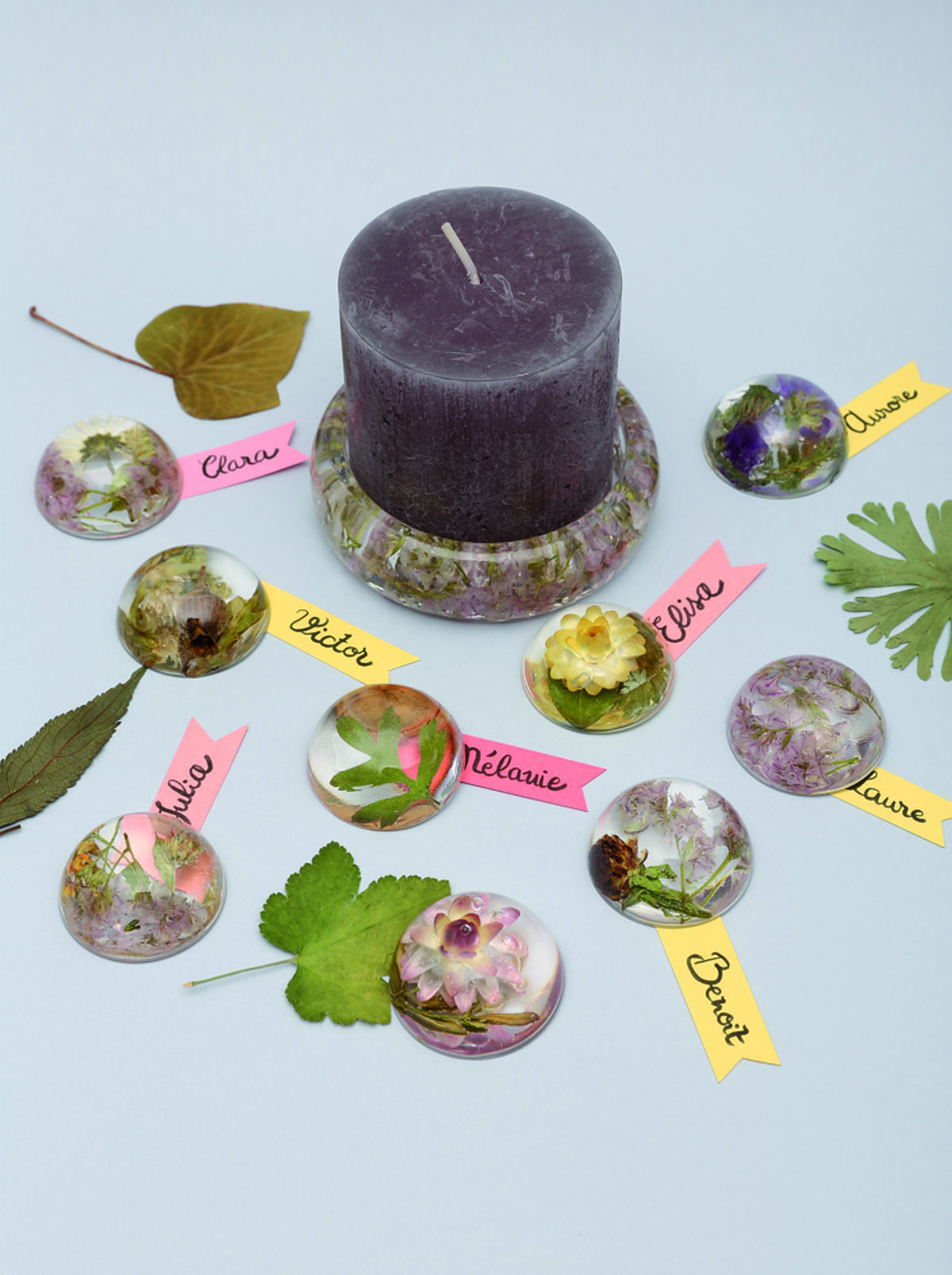 herbiers marque-places Hélène Jourdain